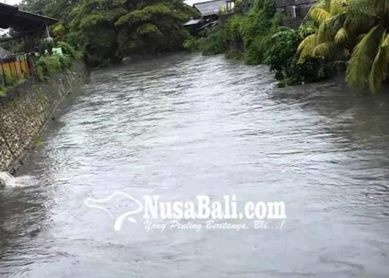 Nusabali.com - penataan-tukad-mati-lurah-legian-berharap-pohon-yang-ditebang-diganti