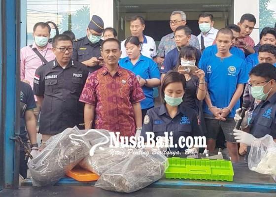Nusabali.com - belasan-kilogram-ganja-dimusnahkan