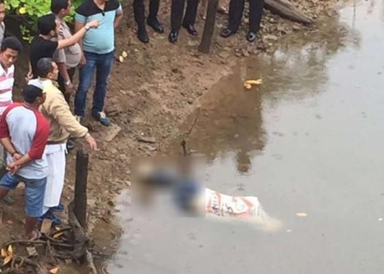 Nusabali.com - mayat-dalam-karung-mengapung-di-sungai