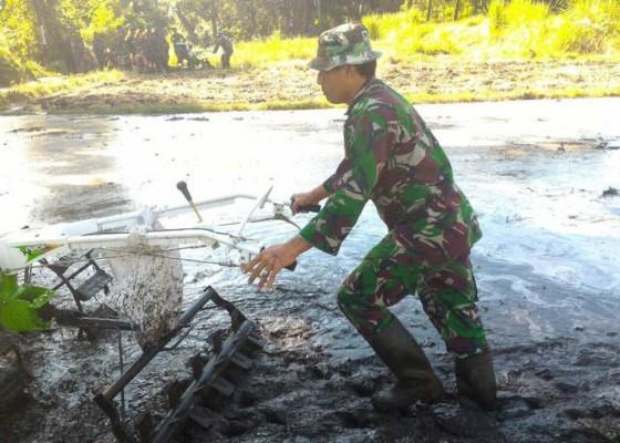 Nusabali.com - puluhan-anggota-babinsa-belajar-jalankan-traktor