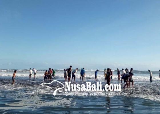 Nusabali.com - berebut-pis-polong-di-pantai-yeh-gangga
