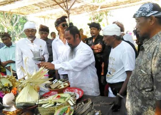 Nusabali.com - desa-adat-kedonganan-gelar-ngaben-massal-160-sawa