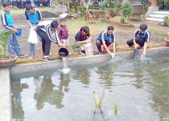 Nusabali.com - siswa-smk-giri-pandawa-tebar-459-ikan-karper