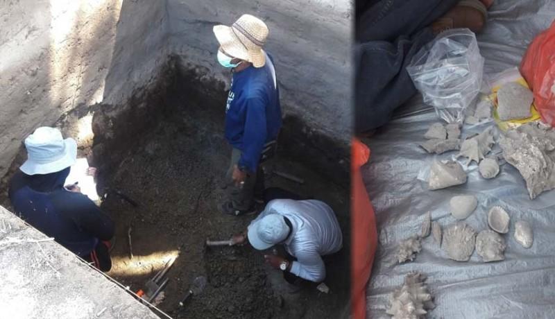 www.nusabali.com-temukan-fosil-kerang-dan-gerabah-dari-peradaban-2000-tahun-lalu