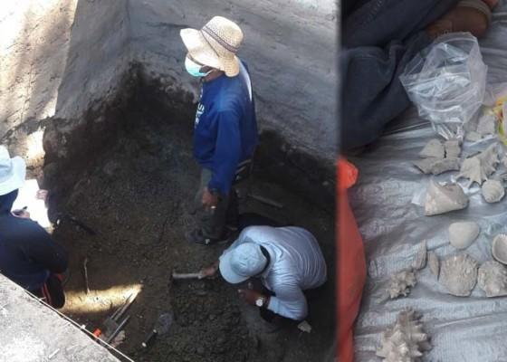 Nusabali.com - temukan-fosil-kerang-dan-gerabah-dari-peradaban-2000-tahun-lalu