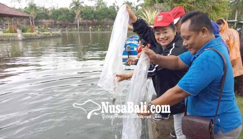 www.nusabali.com-bupati-tebar-10000-ikan-nila