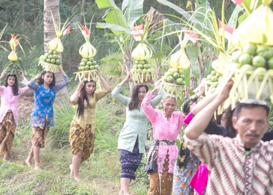 Nusabali.com - festival-jambu