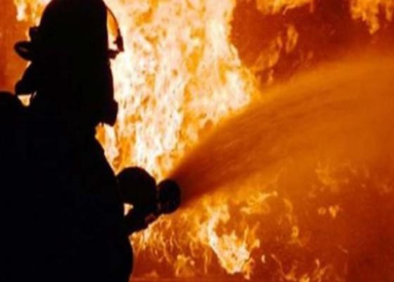 Nusabali.com - sadis-1-keluarga-tewas-sengaja-dibakar