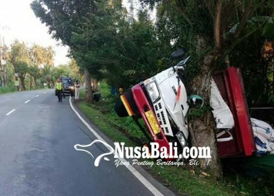 Nusabali.com - hindari-truk-truk-tabrak-pohon