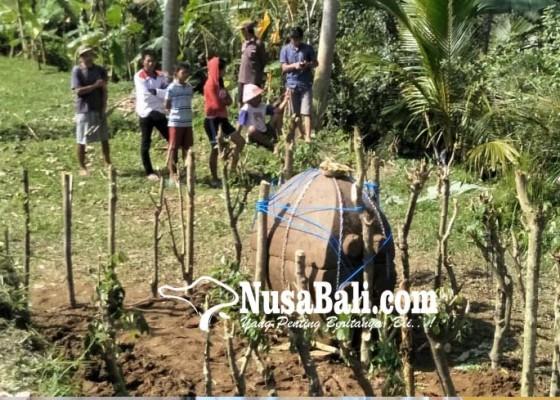 Nusabali.com - sarkofagus-berisi-tulang-ditemukan-subak-dugul