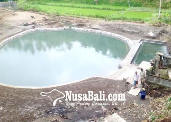 Nusabali.com - embung-telung-buana-tercemar-abu-vulkanik