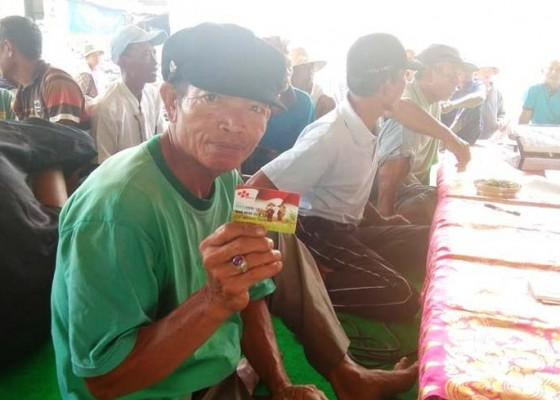 Nusabali.com - sosialisasi-kurang-petani-kebingungan