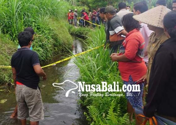 Nusabali.com - temuan-orok-gegerkan-warga-dusun-penasan