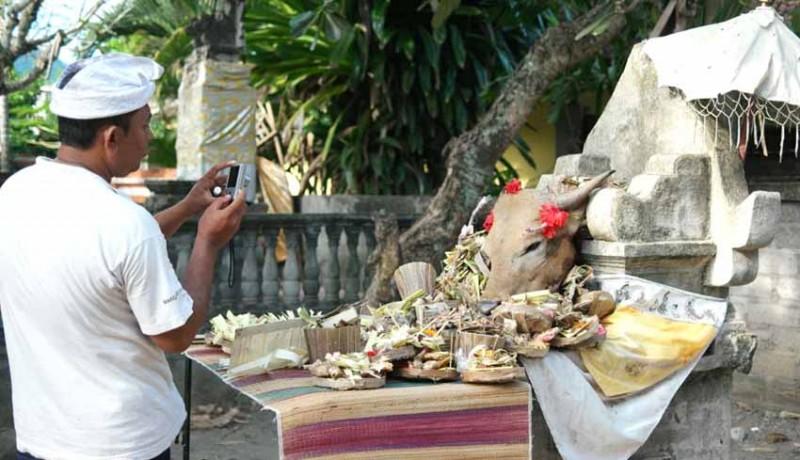 www.nusabali.com-krama-gunaksa-gelar-tradisi-mejaga-jaga