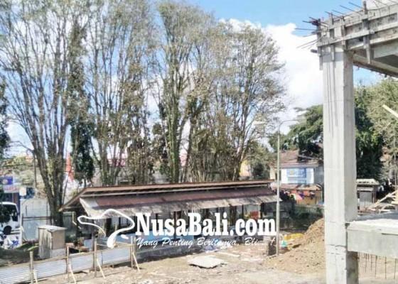 Nusabali.com - disperindag-ajukan-permohonan-tebang-pohon-perindang