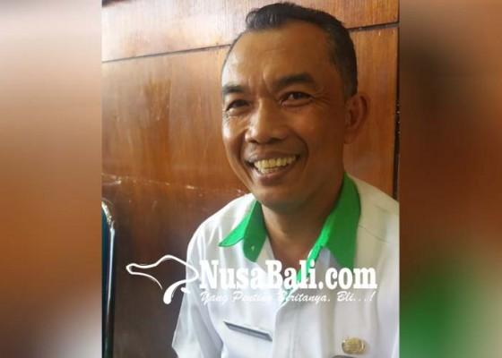 Nusabali.com - kucing-terserang-rabies-di-pundukdawa