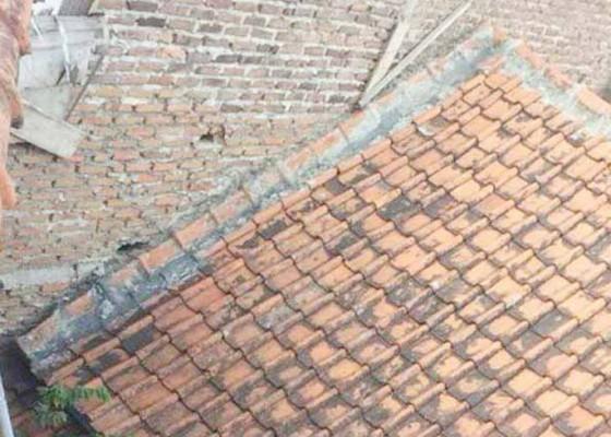 Nusabali.com - eko-terpaksa-pindah-rumah