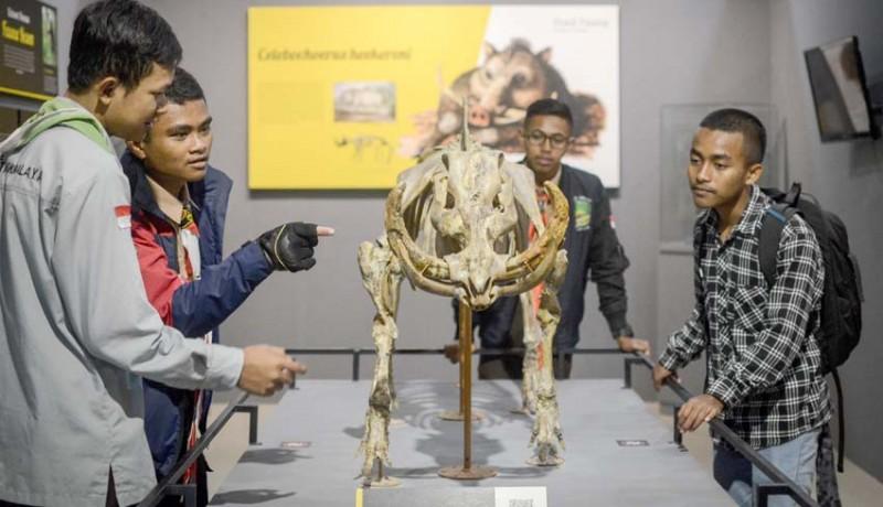 www.nusabali.com-koleksi-baru-museum-geologi