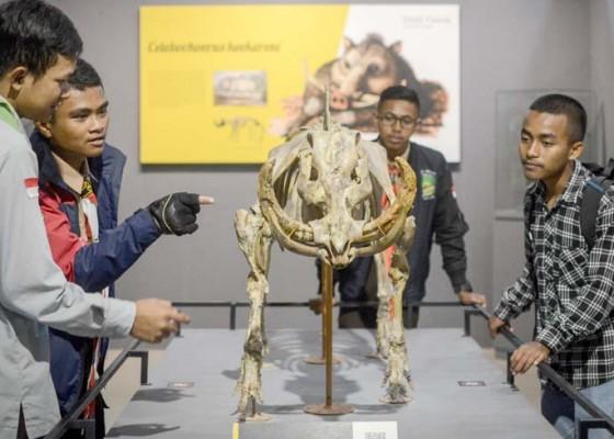 Nusabali.com - koleksi-baru-museum-geologi