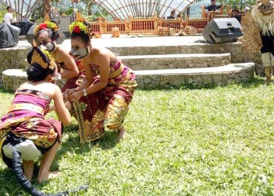 Nusabali.com - festival-jatiluwih-ii-terlalu-singkat