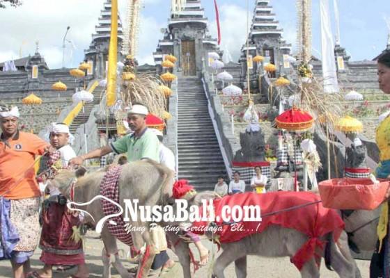 Nusabali.com - mapepada-wewalungan-di-pura-penataran-agung-nangka