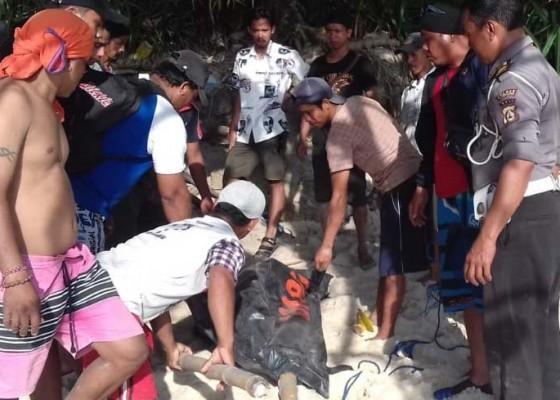 Nusabali.com - mahasiswa-tewas-saat-selfi-di-nusa-penida