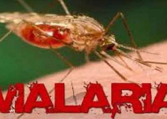 Nusabali.com - ratusan-pengungsi-terinfeksi-malaria