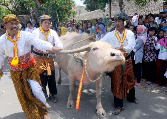 Nusabali.com - tradisi-udik-udik-soropaten