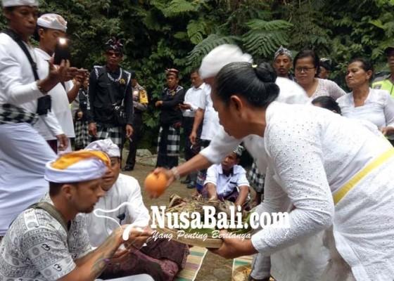 Nusabali.com - bule-naik-palinggih-gemetar-saat-prosesi-upacara-guru-piduka