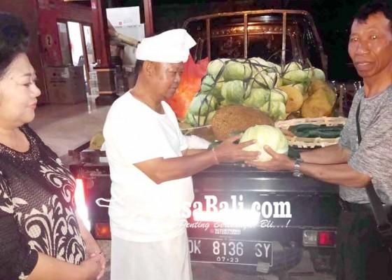 Nusabali.com - ketua-sta-mapunia-sayur-satu-pick-up