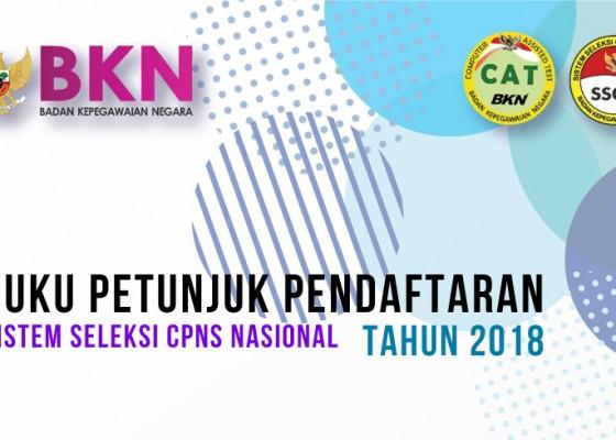 Nusabali.com - sebelum-daftar-cpns-2018-baca-dulu-buku-petunjuk-resmi-ini