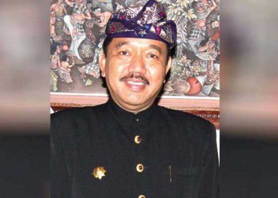 Nusabali.com - wagub-cok-ace-apresiasi-even-berbasis-komunitas-anak-bali