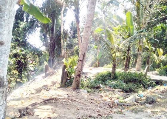 Nusabali.com - dlh-langsung-bersihkan-tpa-liar