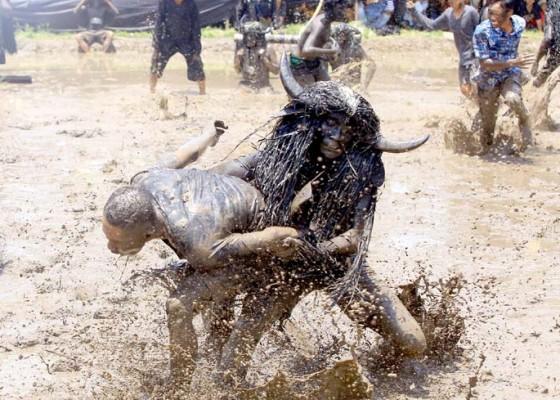 Nusabali.com - ritual-adat-kebo-keboan