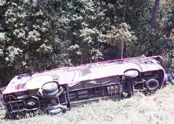 Nusabali.com - sopir-dan-pegawai-agen-travel-tewas