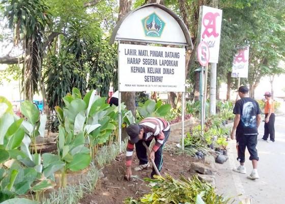 Nusabali.com - dkp-tata-taman-terminal-pesiapan