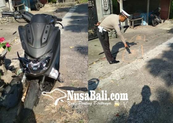 Nusabali.com - adu-jangkrik-lawan-bus-pemotor-tewas