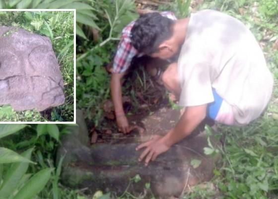 Nusabali.com - ditemukan-batu-diduga-sarkofagus-di-hutan