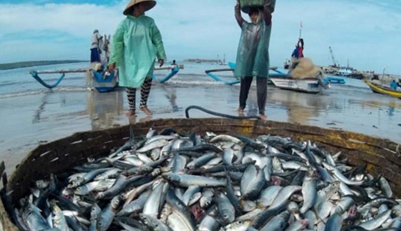 www.nusabali.com-bumn-kebanjiran-pesanan-ikan-ke-mancanegara