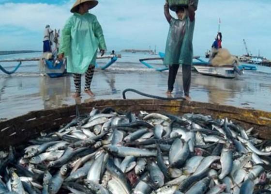 Nusabali.com - bumn-kebanjiran-pesanan-ikan-ke-mancanegara