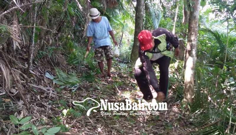 www.nusabali.com-wisatawan-mulai-lirik-trekking-telunwayah-duuran