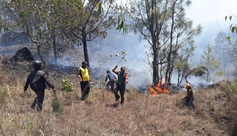 www.nusabali.com-hutan-lindung-di-kawasan-gunung-batur-terbakar