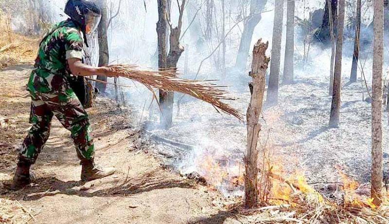 www.nusabali.com-pangdam-turut-padamkan-kebakaran-di-yeh-mampeh
