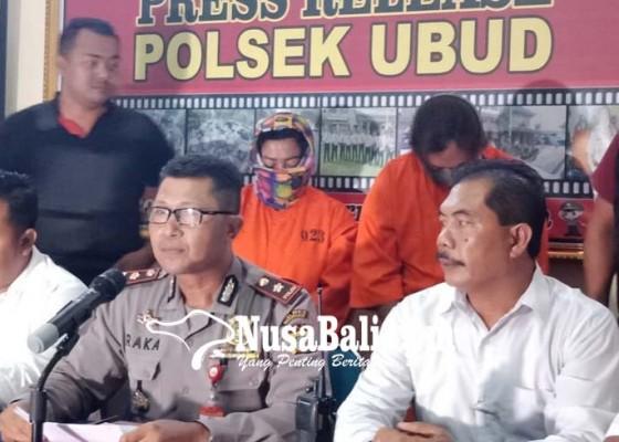 Nusabali.com - pelaku-dagang-nasi-jinggo-penadahnya-seorang-janda
