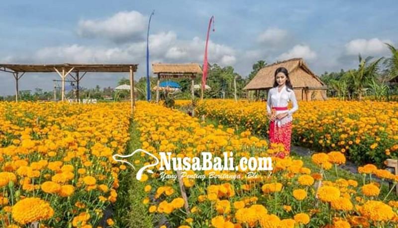 www.nusabali.com-desa-bakas-terbaik-di-festival-desa