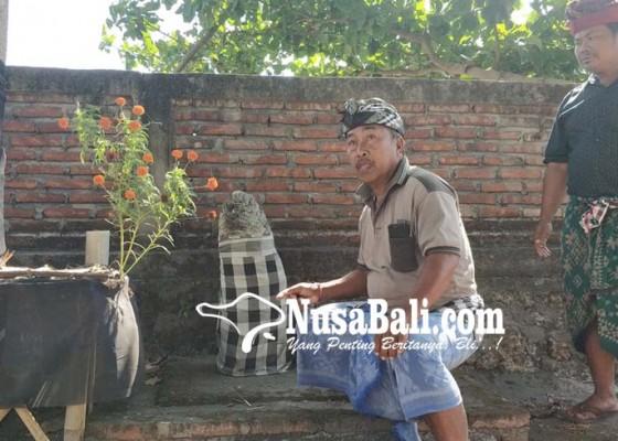 Nusabali.com - dalam-4-tahun-panjang-batu-bertambah-dari-40-cm-menjadi-80-cm