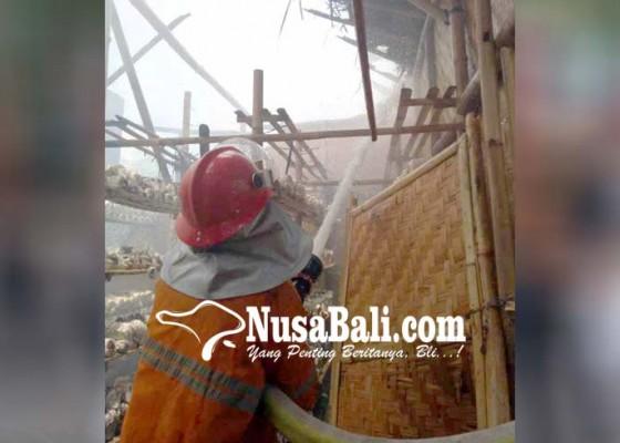 Nusabali.com - lahan-dan-bangunan-budidaya-jamur-terbakar