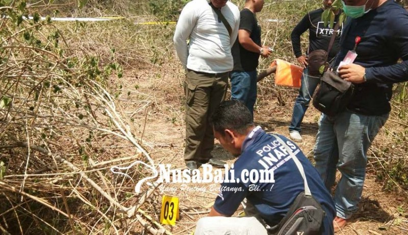 www.nusabali.com-kerangka-manusia-ditemukan-di-tnbb
