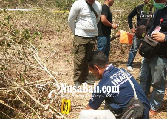 Nusabali.com - kerangka-manusia-ditemukan-di-tnbb