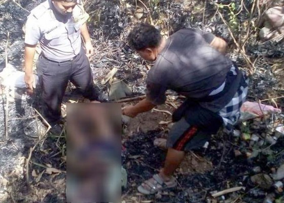 Nusabali.com - gagal-selamatkan-diri-pekak-tewas-terbakar-di-kebun-bambu-miliknya